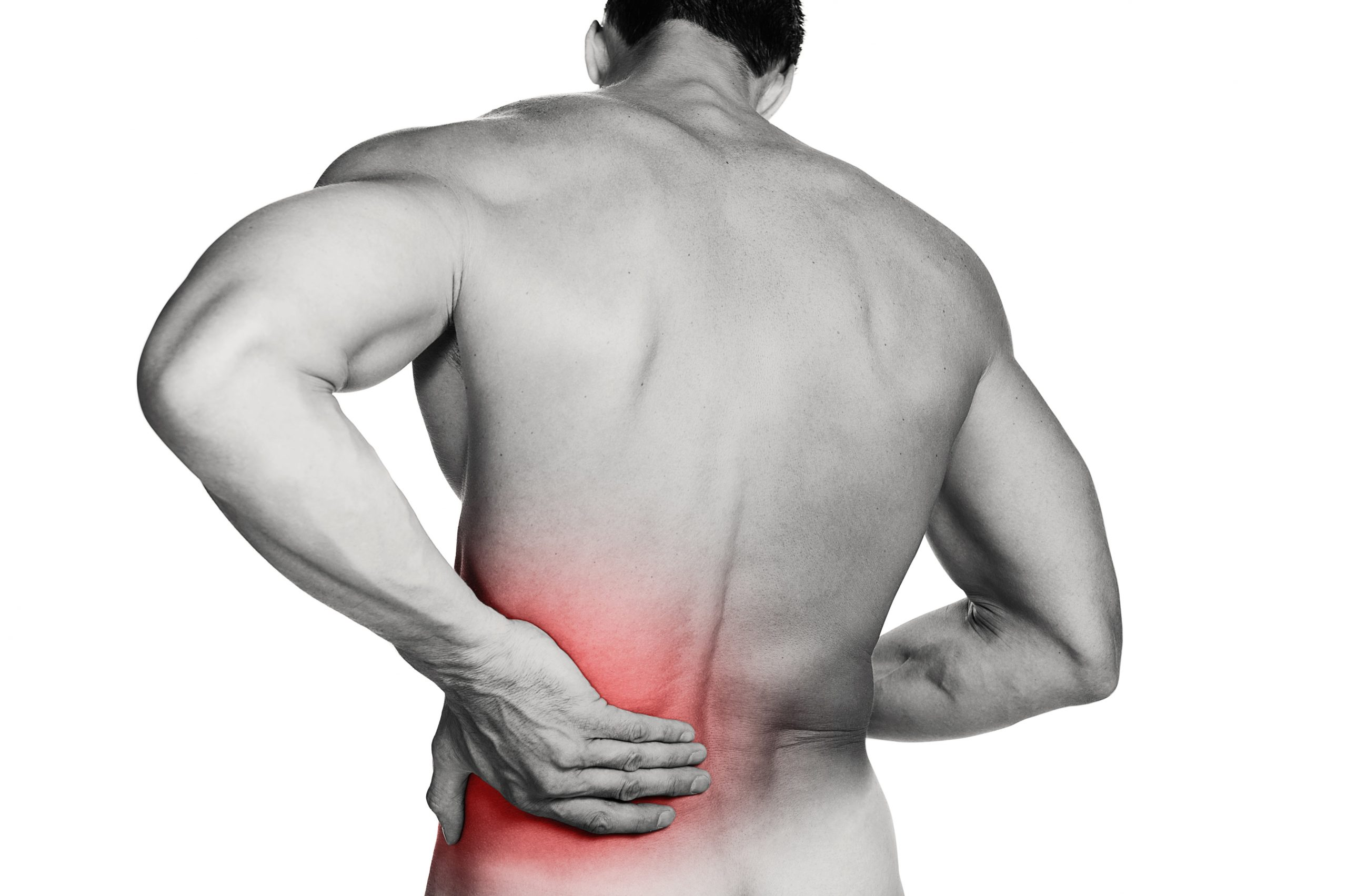 Coccyx Cushion. How To Put Your Pain Behind You!